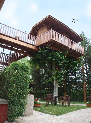 Maitenea, habitación de hotel en un árbol
